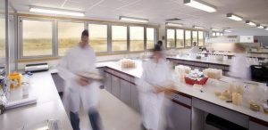 Microbiology testing at Wickham Laboratories