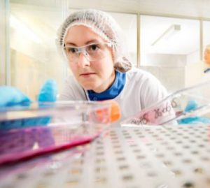 Cytotoxicity testing services at Wickham Laboratories